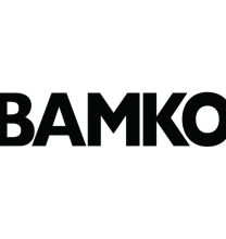 BAMKO, LLC named #1 among Medium-Sized Companies in the Los Angeles Business Journal's Annual Ranking of the Best Places to Work